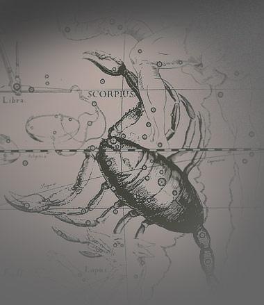 скорпионы и работа